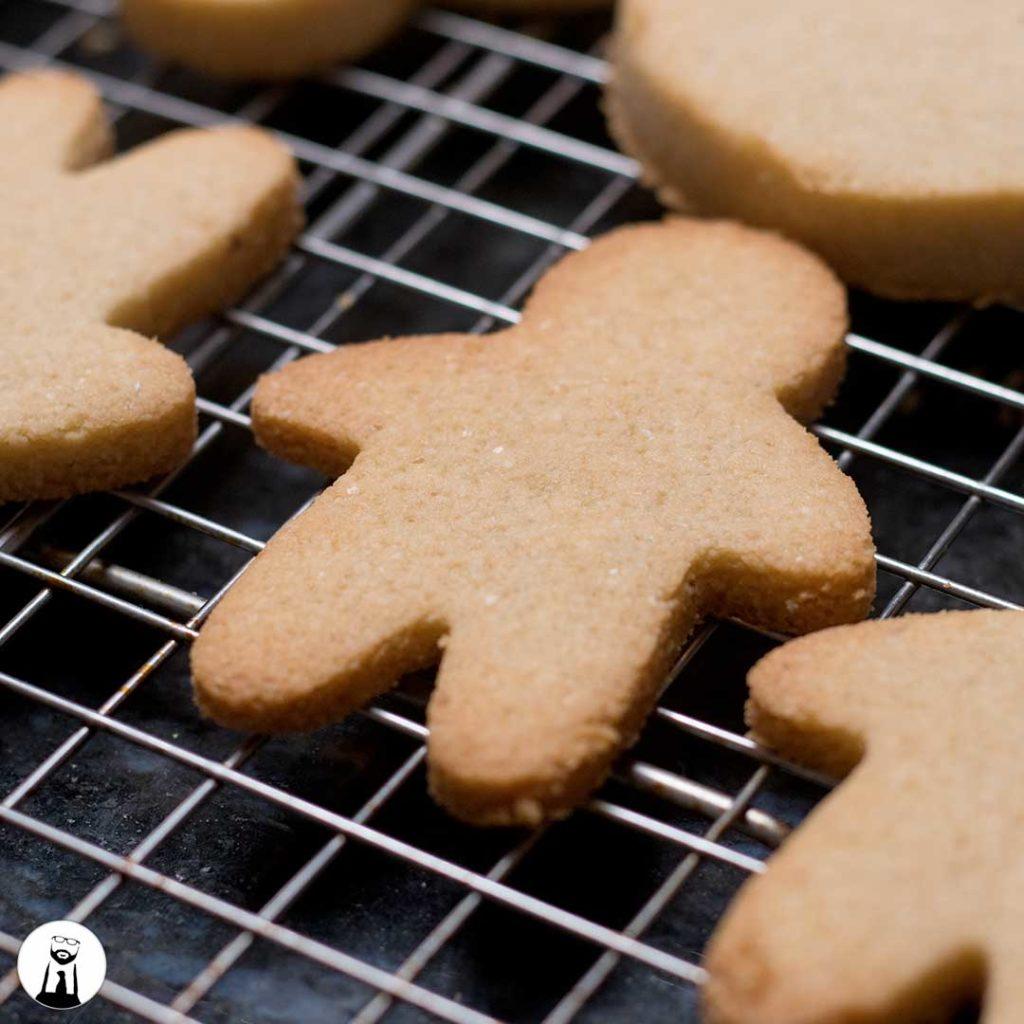 gingerbread cutout of sugar cookie